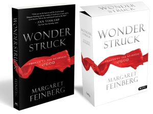 Blog Post Wonderstruck Cover Art Image